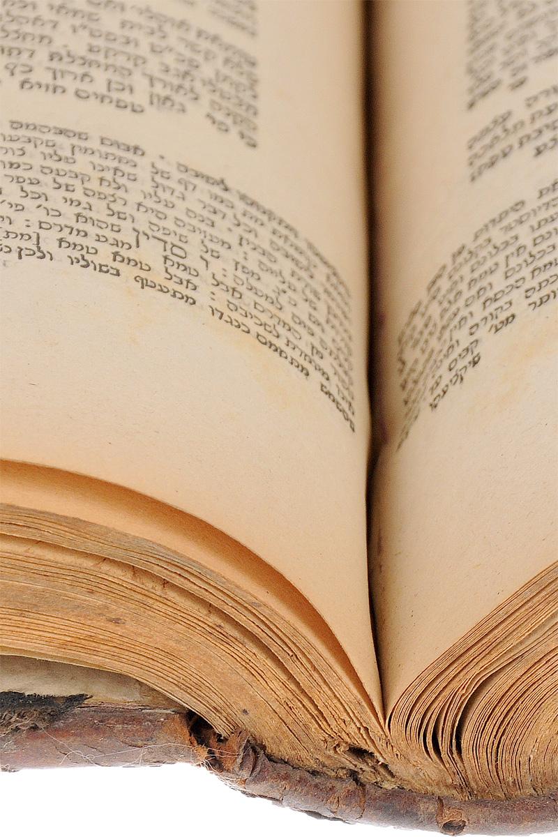 Талмуд Вавилонский. Трактат Ныда. Часть XIX