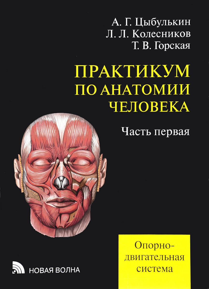 Практикум по анатомии человека. Учебное пособие. В 4 частях. Часть 1. Опорно-двигательная система