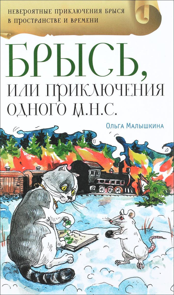 Брысь, или Приключения одного м.н.с