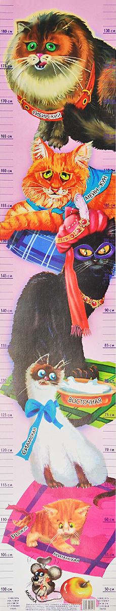 Кошки. Ростомер