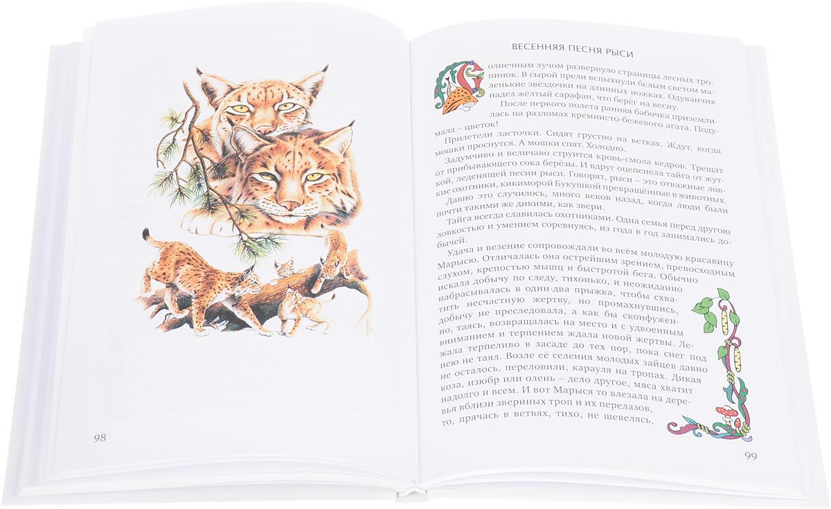 Ирбис - снежный барс. Сказки об охраняемых видах Сибири и Дальнего Востока