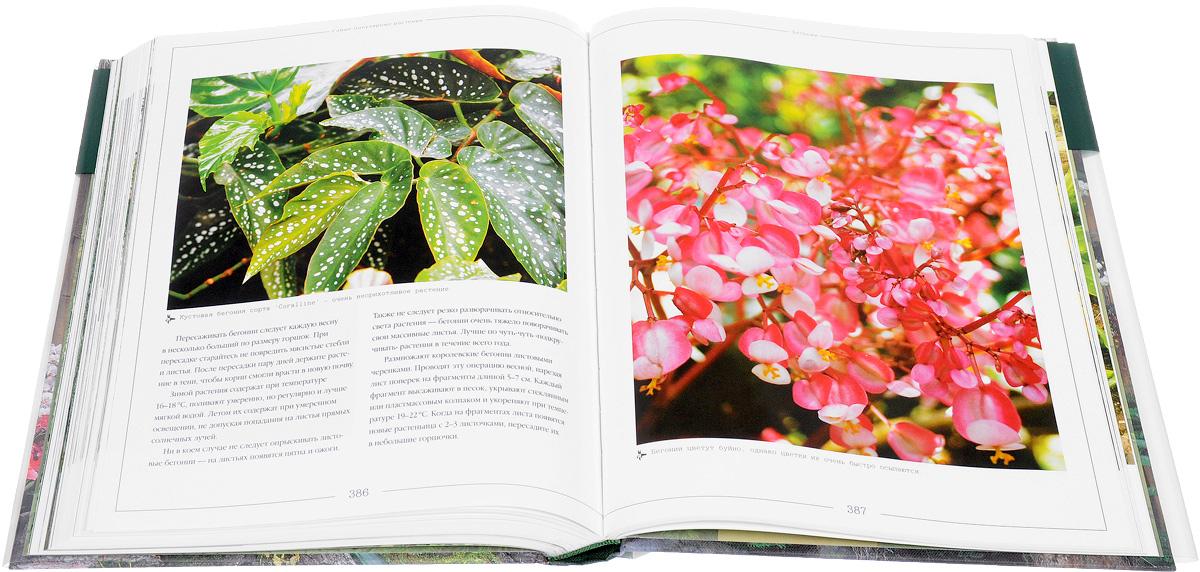 Комнатное цветоводство. Большая иллюстрированная энциклопедия