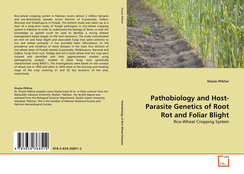 Физиология растений учебник кузнецов и дмитриева