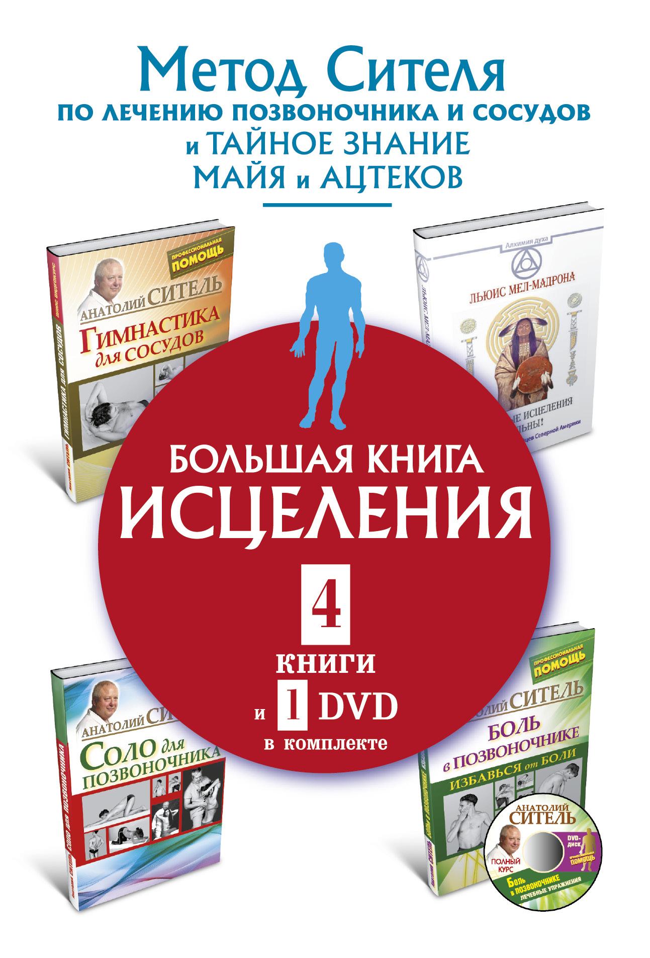 Большая книга исцеления (комплект из 4 книг + DVD)