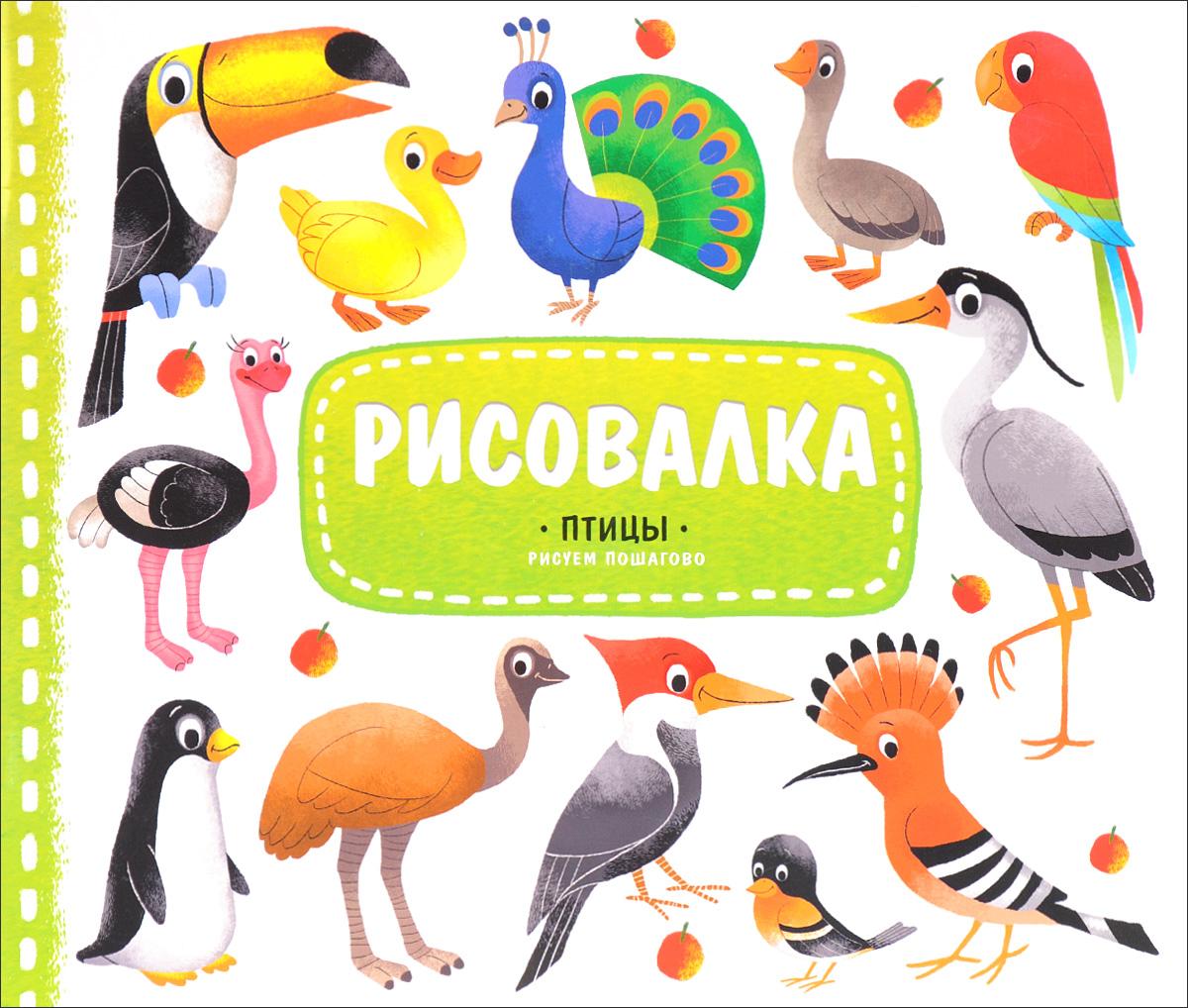 Птицы. Рисуем пошагово (+ наклейки)