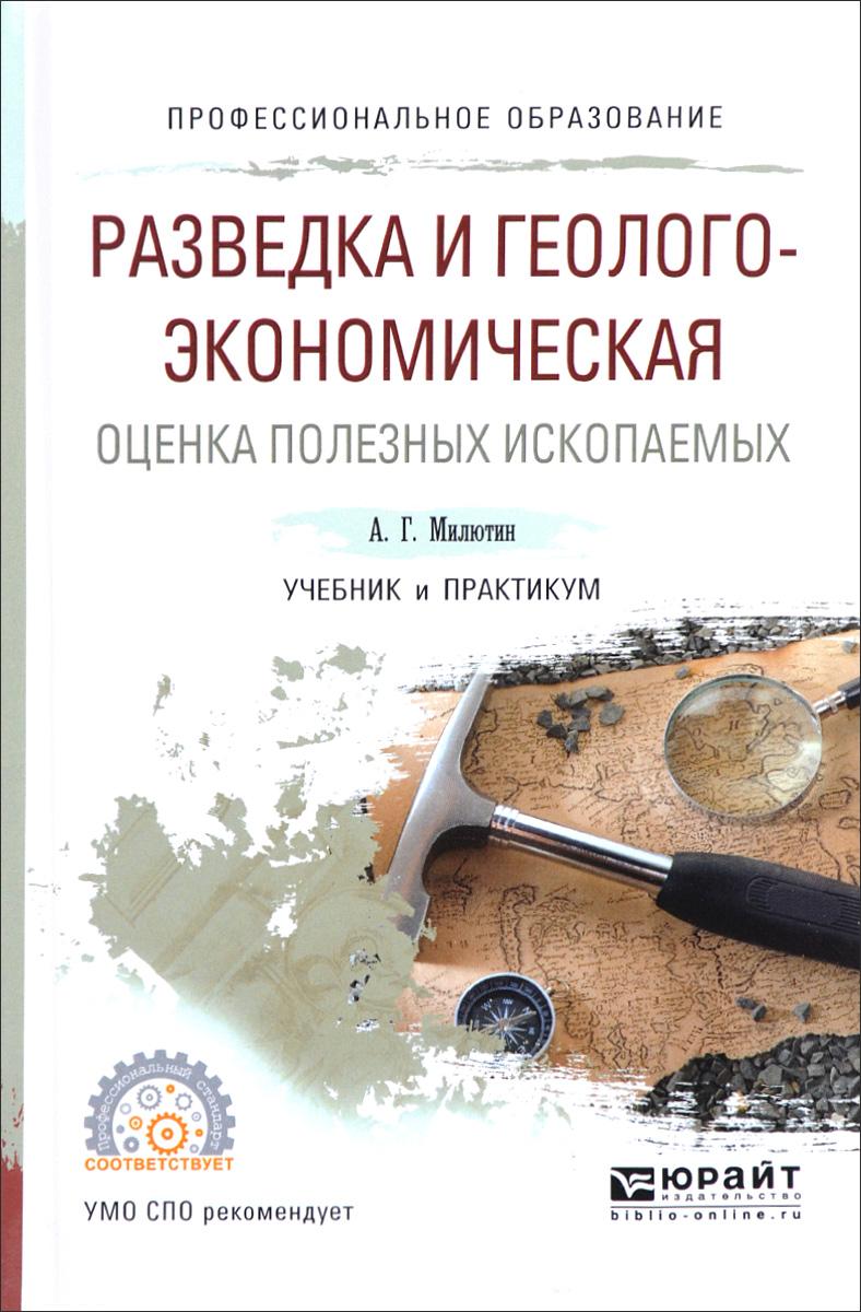 Разведка и геолого-экономическая оценка полезных ископаемых. Учебник и практикум