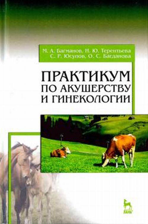 Практикум по акушерству и гинекологии. Учебное пособие