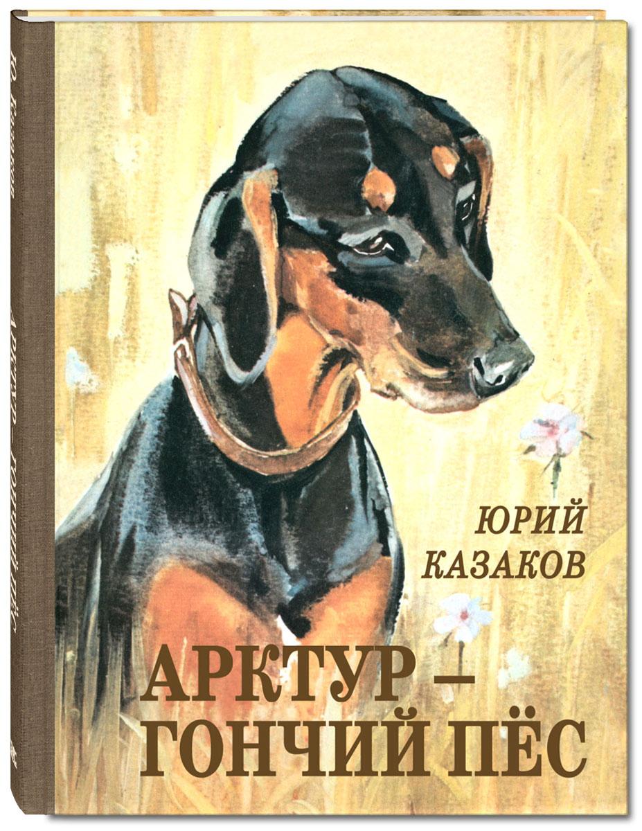 Арктур - гончий пёс