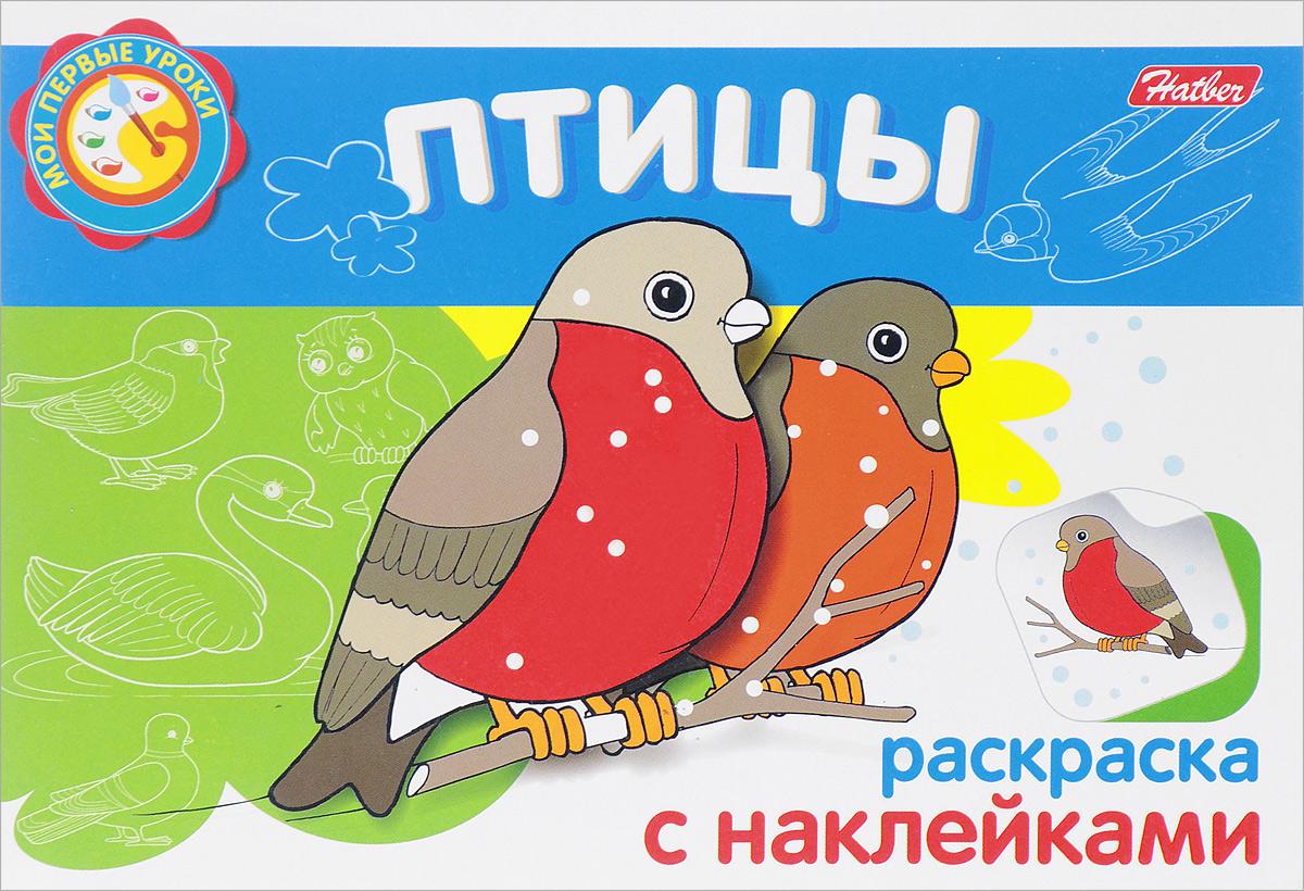 Птицы. Раскраска (+ наклейки)
