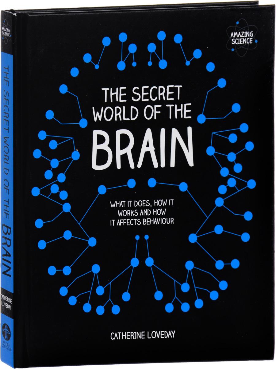The Secret World of the Brain