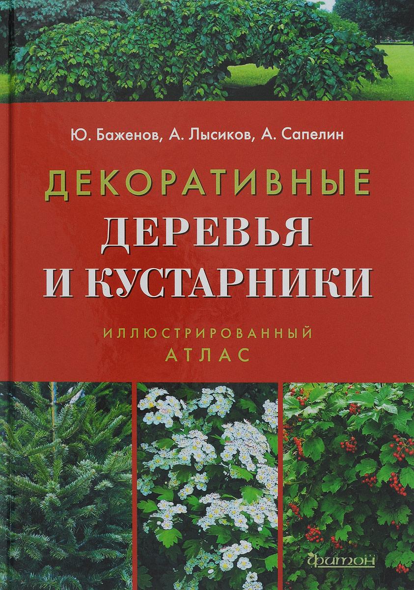 the tree and shrub expert d.g. hessayon