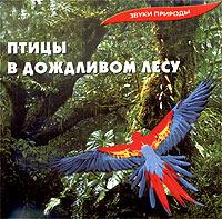 Zakazat.ru Звуки природы. Птицы в дождливом лесу