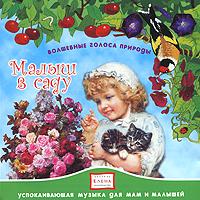 Волшебные голоса природы. Малыш в саду 2009 Audio CD
