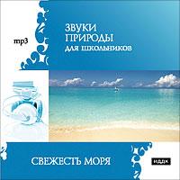 Диск содержит один трек в формате mp3.