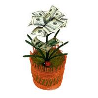 Денежный цветок Расцвет бизнеса. Доллары, цвет: красный, зеленый, белый89968Настольная композиция выполнена в виде симпатичного денежного цветка. На пластиковое основание цветка насажены миниатюрные купюры-дубли достоинством в 100 долларов. Цветок закреплен в стеклянном стакане-горшочке, оформленном текстильной сеткой. У основания цветка расположена забавная божья коровка.