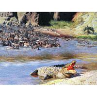 Картина-репродукция Крокодил, без рамки, 40 х 30 см 1642916429Картина-репродукция без рамки Крокодил дополнит интерьер любого помещения, а также может стать изысканным подарком для ваших друзей и близких. Благодаря оригинальному дизайну картина может использоваться для оформления любых интерьеров. Картина выполнена на холсте масленым рисунком по шаблону. Такая картина - вдохновляющее декоративное решение, привносящее в интерьер нотки творчества и изысканности!