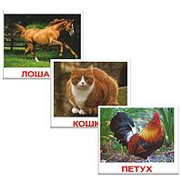 Комплект мини-карточек Домашние животныеВСПМК-ДомЖЧем меньше ребенок, тем легче он впитывает любые новые для него знания. Родителям важно успеть воспользоваться этим. Комплект Домашние животные содержит 20 карточек с изображением разных домашних животных и предназначен для занятий с детьми. Этот набор карточек, поможет вашему малышу научиться воспринимать русский язык. На каждой карточке изображения разных видов домашних животных, с подписями. Обучение по карточкам стимулирует развитие различных отделов головного мозга, благодаря чему у ребёнка формируется фотографическая память. Карточки способствует развитию речи, пополнению словарного запаса, развитию цветового восприятия, интеллекта, мышления, памяти, скорости реакции. Рекомендуемый возраст от 12 месяцев.
