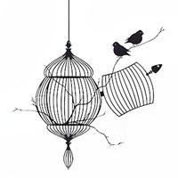 """Стикер Paristic """"Птицы на свободе"""", 34 х 40 см, Paris-Paris"""