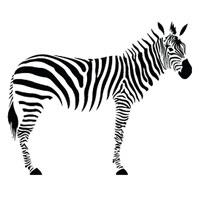 Стикер Paristic Зебра, 120 х 152 смПР00171Добавьте оригинальность вашему интерьеру с помощью необычного стикера Зебра. Изображение на стикере имитирует зебру. Необыкновенный всплеск эмоций в дизайнерском решении создаст утонченную и изысканную атмосферу не только спальни, гостиной или детской комнаты, но и даже офиса. Стикер выполнен из матового винила - тонкого эластичного материала, который хорошо прилегает к любым гладким и чистым поверхностям, легко моется и держится до семи лет, не оставляя следов. В комплекте прилагается ракель, с помощью которого вы без труда наклеите стикер на выбранную поверхность. Сегодня виниловые наклейки пользуются большой популярностью среди декораторов по всему миру, а на российском рынке товаров для декорирования интерьеров - являются новинкой. Paristic - это стикеры высокого качества. Художественно выполненные стикеры, создающие эффект обмана зрения, дают необычную возможность использовать в своем интерьере элементы городского пейзажа. Продукция...