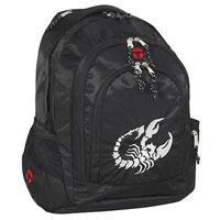 Рюкзак школьно-спортивный Скорпион.