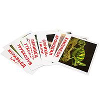 Комплект карточек Экзотические животные978-5-91666-115-6Комплект Экзотические животные, содержащий 20 карточек с изображением разнообразных животных и базовыми фактами с заданиями на другой стороне, предназначен для занятий с детьми. Просмотр таких карточек позволяет ребенку быстро усвоить названия животных, запомнить, как они пишутся, развивает у него интеллект и формирует фотографическую память. Карточки животных намеренно сделаны не на белом фоне, а в естественной среде обитания, поскольку такие карточки не только гораздо эстетичнее, но и дают малышам представление об образе жизни животного. Лишних деталей, мешающих восприятию, на картинках нет.
