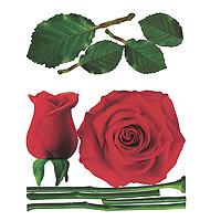 Виниловая наклейка Rose, 57 см х 70 см702Добавьте оригинальность вашему интерьеру с помощью виниловой наклейки Rose. Оригинальное исполнение добавит изысканности в дизайн. Наклейки легко наклеиваются, а при необходимости легко снимаются, не оставляя следов. Наклейки изготовлены на плотном виниле и не меняют цвет в зависимости от цвета поверхности, на который наносятся. Лист с наклейками вложен в пластиковую подарочную упаковку. Характеристики: Размер листа с наклейками: 57 см х 70 см. Диаметр большой розы: 45 см. Размер упаковки: 57,5 см х 8 см х 8 см. Производитель: Италия. Изготовитель: Корея. Артикул: 702.