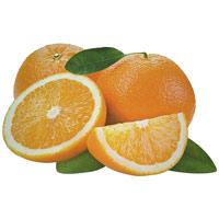 Салфетка под горячее АпельсинR2S-T22212-O-ALОригинальная салфетка под горячее идеально дополнит интерьер вашей кухни. Салфетка оформлена изображением апельсинов. Характеристики: Материал: ПВХ. Размер: 45 см х 30 см. Производитель: Италия. Артикул: R2S-T22212-O-AL.