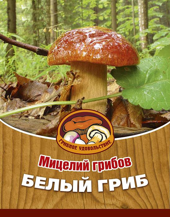 Мицелий грибов Белый гриб, субстрат. Объем 60 мл10013Белый гриб - самый желанный в корзине грибника. В кулинарии к белому грибу применяют все известные способы обработки. Но для лучшего сохранения всех его достоинств, предпочтительнее сушка. Благодаря мицелию грибов Белый гриб теперь вы без труда сможете вырастить любимые грибы у себя в саду или дома. И уже через год после посадки у вас появится первый урожай грибов. За один год можно собрать от 2 до 5 кг. Для того чтобы вырастить грибы вам понадобится: мицелий Грибное удовольствие, дерево хвойной породы, лучше всего сосна, грунт для комнатных растений, опилки хвойных пород дерева увлажненные, лопата, мох, листовой опад. Благоприятное время для посадки мицелия Белый гриб - круглый год. Плодоносят мицелии в среднем от 3 до 5 лет, в зависимости от сорта грибов. Характеристики: Материал: субстрат. Размер упаковки: 11 см х 15,5 см. Объем: 60 мл. Артикул: 10013.