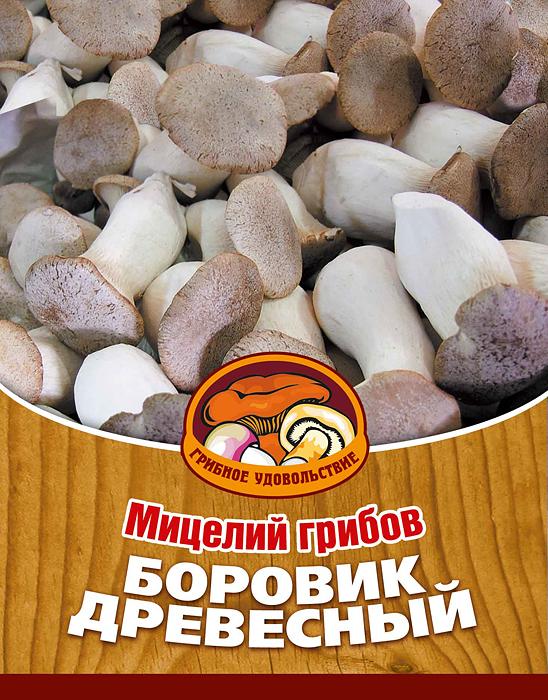 Мицелий грибов Боровик древесный, 16 древесных палочек10007Боровик древесный весьма популярен в Восточной Азии и постепенно завоевывает Европу. Гриб обладает высокими кулинарными свойствами: его можно жарить, отваривать для первых блюд и салатов, жарить на гриле, использовать для салатов в свежем виде, а так же для различных соусов и грибной икры. Гриб хорошо сочетается в блюдах с рыбой, мясом, морепродуктами и овощами. Благодаря мицелию грибов Боровик древесный теперь вы без труда сможете вырастить любимые грибы у себя в саду или дома. И уже через 3-6 месяцев после посадки у вас появится первый урожай грибов. За один год можно собрать от 2 до 4 кг с каждого бревна. Для того чтобы вырастить грибы вам понадобится: мицелий Грибное удовольствие, бревно лиственных пород (береза, тополь, ива, клен), дрель. Благоприятное время для посадки мицелия Боровик древесный - в природных условиях с апреля по октябрь, в помещении - круглый год. Плодоносят мицелии в среднем от 3 до 5 лет, в зависимости от сорта грибов. ...