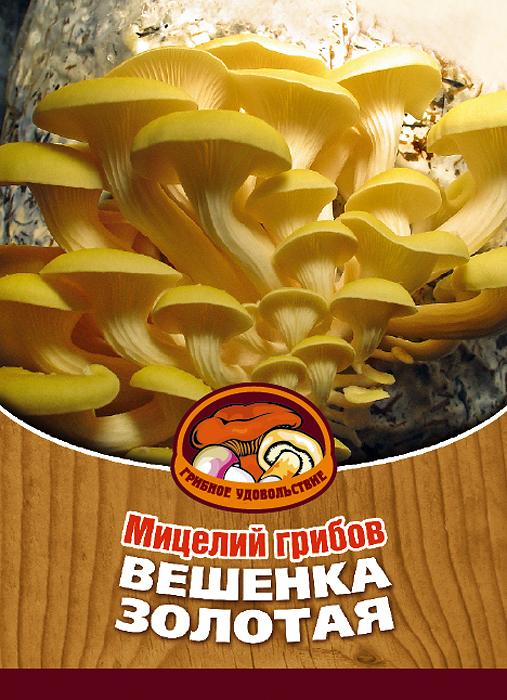 Мицелий грибов Вешенка золотая, 16 древесных палочек10021Вешенка золотая встречается исключительно на Дальнем Востоке. Это один из любимых грибов жителей Приморского края. Благодаря мицелию грибов Вешенка золотая теперь вы без труда сможете вырастить любимые грибы у себя в саду или дома. И уже через 2-4 месяца после посадки у вас появится первый урожай грибов. За один год можно собрать от 3 до 6 кг грибов с каждого бревна. Для того чтобы вырастить грибы вам понадобится: мицелий Грибное удовольствие, бревно или палка лиственных пород (бук, тополь, береза, ива, клен, рябина и плодовые деревья), дрель. Благоприятное время для посадки мицелия Вешенка золотая - в природных условиях с мая по сентябрь, в помещении - круглый год. Плодоносят мицелии в среднем от 3 до 5 лет, в зависимости от сорта грибов. Характеристики: Материал: древесная палочка. Размер упаковки: 11 см х 15,5 см. Артикул: 10021.