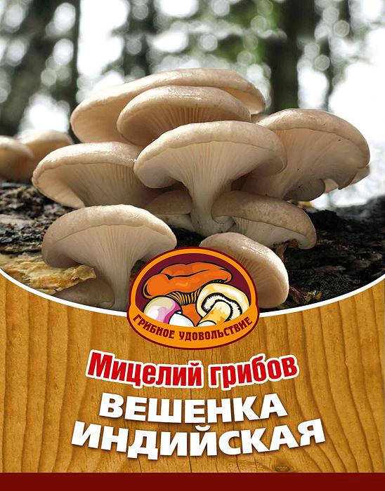"""Мицелий грибов """"Вешенка индийская"""", 16 древесных палочек"""