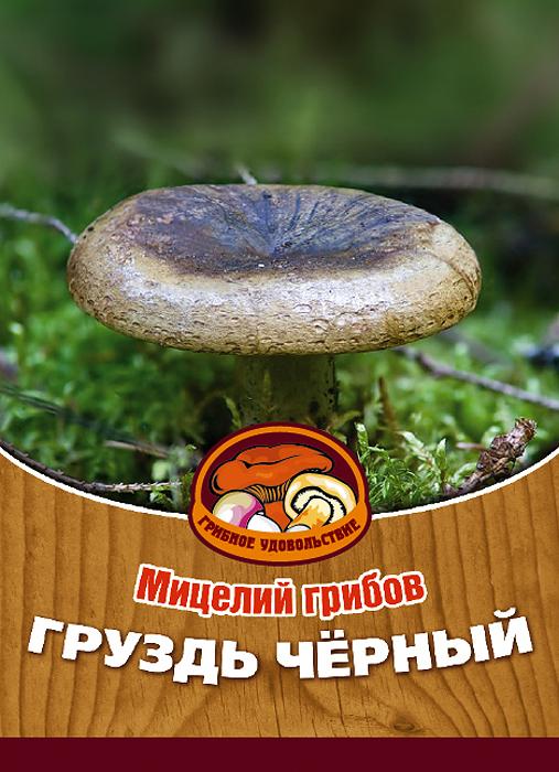 Мицелий грибов Груздь черный, субстрат. Объем 60 мл10025Груздь черный - вкусный высококачественный гриб, который используется для засолки и маринования. Благодаря мицелию грибов Груздь черный вы без труда сможете вырастить любимые грибы у себя в саду или дома. И уже на следующий год после посадки у вас появится первый урожай грибов. За один год можно собрать от 5 до 15 грибов с одного дерева. Для того чтобы вырастить грибы вам понадобится: мицелий Грибное удовольствие, дерево лиственной породы (не моложе 4 лет), грунт для комнатных растений с высоким содержанием торфа, увлажненные опилки лиственных пород дерева, лопата, мох, листовой опад. Благоприятное время для посадки мицелия Груздь черный - круглый год. Плодоносят мицелии в среднем от 3 до 5 лет, в зависимости от сорта грибов.