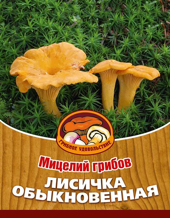 Мицелий грибов Лисичка обыкновенная, субстрат, 60 мл10014Лисички можно приготовить по-разному: пожарить, отварить, засушить, замариновать или засолить, также потрясающе вкусны соусы из лисичек. Благодаря мицелию грибов Лисичка обыкновенная теперь вы без труда сможете вырастить любимые грибы у себя в саду или дома. И уже через год после посадки у вас появится первый урожай грибов. За один год можно собрать до 1/2 ведра с одного дерева. Для того чтобы вырастить грибы вам понадобится: мицелий Грибное удовольствие, дерево на дачном участке, лесная почва, лопата, мох, листовой опад, ветки. Благоприятное время для посадки мицелия Лисичка обыкновенная - круглый год. Плодоносят мицелии в среднем от 3 до 5 лет, в зависимости от сорта грибов. Характеристики: Материал: субстрат. Объем: 60 мл. Размер упаковки: 11 см х 15,5 см. Артикул: 10014.