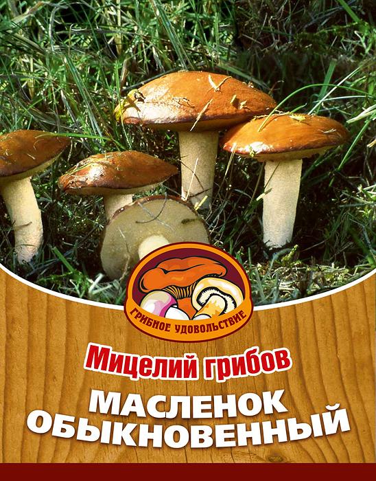 Мицелий грибов Масленок обыкновенный, субстрат. Объем 60 мл10015Маслята - один из наиболее распространенных и популярных грибов средней полосы. Из маслят готовят разнообразные блюда начиная от жарки и заканчивая соленым. Благодаря мицелию грибов Масленок обыкновенный теперь вы без труда сможете вырастить любимые грибы у себя в саду или дома. И уже на следующий год после посадки у вас появится первый урожай грибов. За один год можно собрать от 6 до 17 грибов с одного дерева. Для того чтобы вырастить грибы вам понадобится: мицелий Масленок обыкновенный, дерево хвойной или лиственной породы, грунт для комнатных растений с высоким содержанием торфа, опилки хвойных пород дерева увлажненные, лопата, мох, листовой опад. Благоприятное время для посадки мицелия Масленок обыкновенный - круглый год. Плодоносят мицелии в среднем от 3 до 5 лет, в зависимости от сорта грибов. Характеристики: Материал: субстрат. Размер упаковки: 11 см х 15,5 см. Объем: 60 мл. Артикул: 10015.