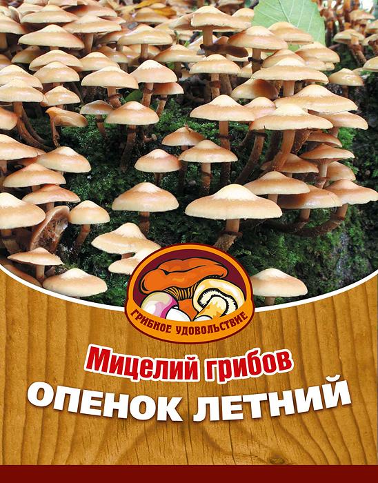 Мицелий грибов Опенок летний, 16 древесных палочек10008Опенок летний - вкусный, деликатесный гриб, обладает сильным ароматом и нежной мякотью. Его можно использовать для приготовления первых и вторых блюд, сушки, маринования и соления. Благодаря мицелию грибов Опенок летний теперь вы без труда сможете вырастить любимые грибы у себя в саду или дома. И уже через 3-5 месяцев после посадки у вас появится первый урожай грибов. За один год можно собрать от 3 до 6 кг с каждого бревна. Для того чтобы вырастить грибы вам понадобится: мицелий Грибное удовольствие, бревно или палка лиственных пород (бук, граб, ольха, осина, ясень, клен, береза, тополь, ива, каштан, дуб), дрель. Благоприятное время для посадки мицелия Опенок летний - в природных условиях с апреля по октябрь, в помещении - круглый год. Плодоносят мицелии в среднем от 3 до 5 лет, в зависимости от сорта грибов. Характеристики: Материал: древесная палочка. Размер упаковки: 11 см х 15,5 см. Артикул: 10008.
