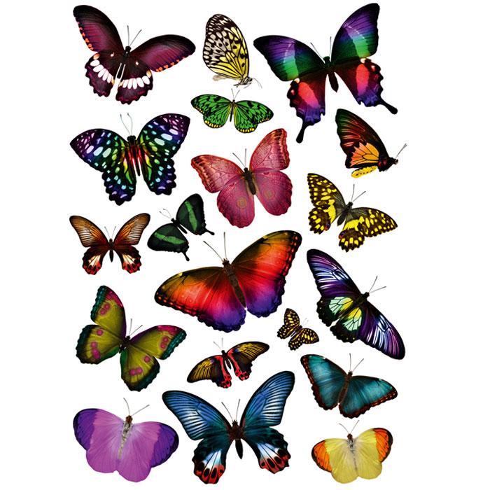 Украшение для стен и предметов интерьера Сказочные бабочкиAE 5001Украшение для стен и предметов интерьера Сказочные бабочки поможет вам украсить интерьер вашего дома и проявить индивидуальность. Декоретто - уникальный способ легко и быстро оживить интерьер, добавить в него уют и радость. Для вас открываются безграничные возможности проявить творчество и фантазию, придумать оригинальный дизайн, придать новый вид стенам и мебели. В коллекции Декоретто вы найдете украшения для любых городских и дачных интерьеров: детских, гостиных, спален, кухонь, ванных комнат. Особенности украшений Декоретто: изготовлены из экологически безопасной самоклеющейся пленки с водоотталкивающей поверхностью; быстро и легко наклеиваются на обои, крашеные стены, дерево, керамическую плитку, металл, стекло, пластик; при необходимости удобно снимаются, не оставляют следов и не повреждая поверхность (кроме бумажных обоев); специальный слой защищает поверхность от влаги и выгорания. Характеристики: Материал:...