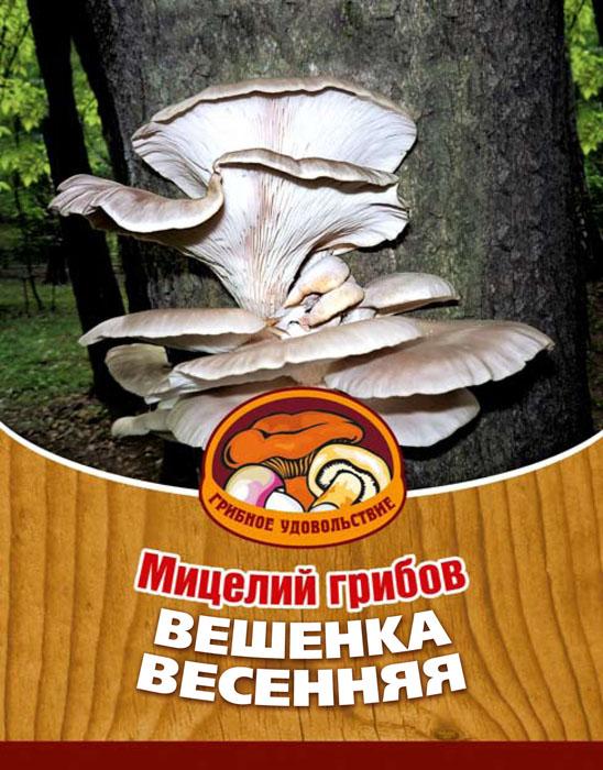 Мицелий грибов Вешенка весенняя, на 16 древесных палочках10037Вешенка весенняя или легочная - наиболее часто встречающийся вид вешенок. Она произрастает от Тихого океана и до Карпатских гор, от Кавказа и до Полярного круга. Есть вешенку можно в тушеном, жареном, маринованном виде, в пирогах и супах; сушить и замораживать про запас. Благодаря мицелию грибов Вешенка весенняя теперь вы без труда сможете вырастить любимые грибы у себя в саду или дома. И уже через 3-6 месяцев после посадки у вас появится первый урожай грибов. За один год можно собрать от 3 до 6 кг с каждого бревна. Для того чтобы вырастить грибы вам понадобится: мицелий Вешенка весенняя, бревно или палка лиственных пород (бук, тополь, береза, ива, клен, рябина и плодовые деревья) без признаков гнили. Благоприятное время для посадки мицелия Вешенка весенняя - в природных условиях с апреля по октябрь, в помещении - круглый год. Плодоносят мицелии волнами, до 3-4 лет на мягкой древесине, 5-7 лет на твердой.