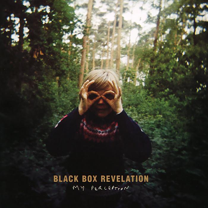 Black Box Revelation. My Perception