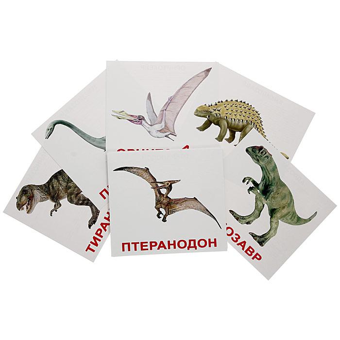 Набор обучающих карточек Динозавры00-160Набор обучающих карточек Динозавры включает в себя 20 карточек и предназначен для занятий с детьми. На лицевой стороне карточки изображен динозавр и написано его название. На оборотной стороне написаны факты и задания. Взрослый в течение 1-2 секунд показывает ребенку карточку с изображением и четко произносит его название. Просмотр карточек позволяет развить у ребенка интеллект и фотографическую память, что в дальнейшем значительно повысит его способности к обучению. Постепенно можно будет предложить малышу выполнить задания, указанные в карточках. Характеристики: Размер карточки: 18,5 см х 16,5 см. Рекомендуемый возраст: от 6 месяцев.