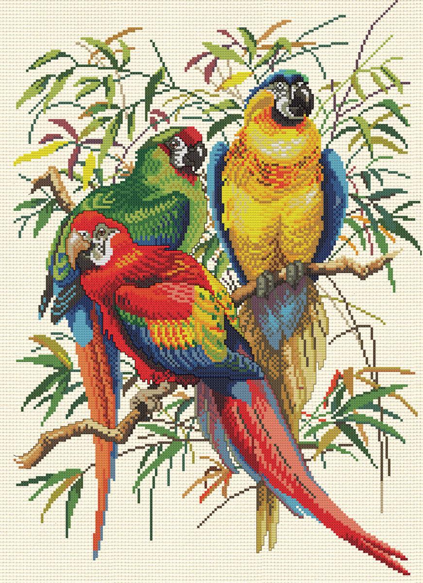 Набор для вышивания крестом Тропические попугаи, 41 см х 54 см4164-14В наборе для вышивания крестом Тропические попугаи есть все необходимое для создания собственного чуда: цветная символьная схема, канва Аида 14 светло-желтого цвета, нитки мулине для вышивания, 2 иголки, инструкция. Красивый и стильный рисунок-вышивка, выполненный на канве, выглядит оригинально и всегда модно. Вышивание крестиком отвлечет вас от повседневных забот, и превратится в увлекательное занятие! Работа, сделанная своими руками, создаст особый уют и атмосферу в доме, и долгие годы будет радовать вас и ваших близких.
