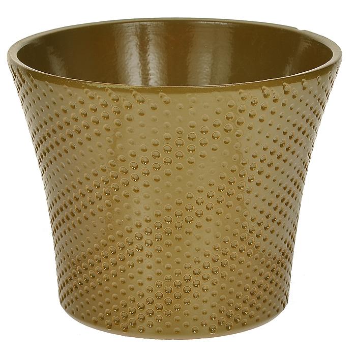 Кашпо для цветов Almas, цвет: оливковый, 1,7 л, диаметр 17 смПт 05717748Кашпо для цветов Almas оригинального дизайна с рельефным рисунком, выполненное из высококачественной керамики - прекрасный способ подчеркнуть красоту и уникальность растения и дополнить интерьер помещения. Характеристики: Материал: керамика. Объем: 1,7 л. Размер кашпо: 17 см х 17 см х 14 см. Размер упаковки: 17 см х 17 см х 14 см. Цвет: оливковый. Артикул: Пт 05717748.