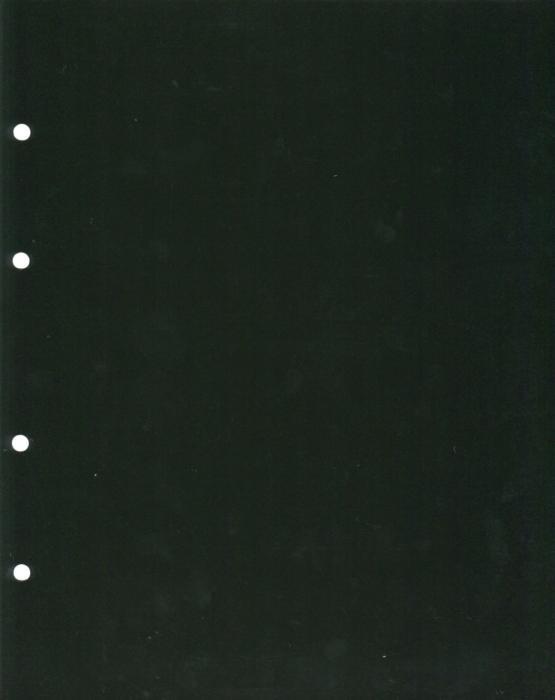 Лист разделительный из черного пластика (упаковка 10 шт). Формат Оптима, производство Россия