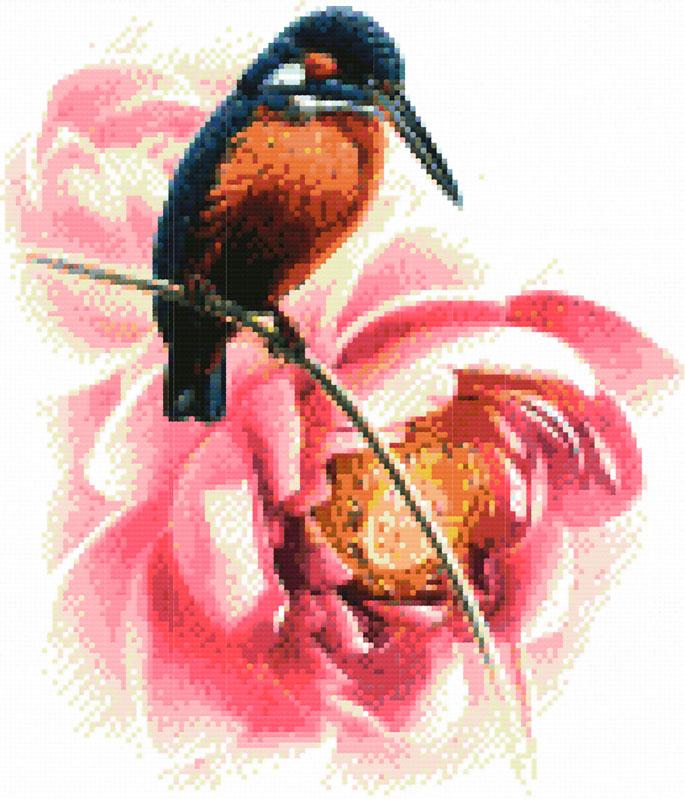 Набор для вышивания крестом Колибри, 34 х 37 см1164-14 КолибриВ наборе для вышивания крестом Колибри есть все необходимое для создания роскошной интерьерной картины: обработанная канва Аида 11 белого цвета с водорастворимым рисунком на канве, хлопковые мулине, цветная символьная схема, 2 иглы, инструкция по вышиванию на русском языке. Водорастворимая краска, с помощью которой на канву нанесен рисунок, смывается при замачивании вышивки в воде. Необычайной красоты рисунок-вышивка с красочным изображением птички колибри и розового цветка обязательно привлечет к себе внимание и будет потрясающе смотреться в интерьере вашего помещения, особенно в интерьере детской комнаты. Вышивание крестом отвлечет вас от повседневных забот и превратится в увлекательное занятие! Работа, сделанная своими руками, создаст особый уют и атмосферу в доме, и долгие годы будет радовать вас и ваших близких.
