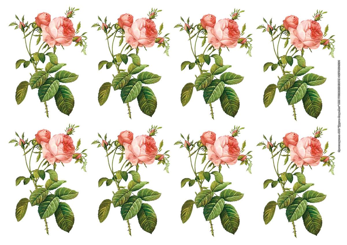 Рисовая карта для декупажа Розы, формат А3na1029Рисовая бумага - мягкая бумага с выраженной волокнистой структурой легко повторяет форму любых предметов. При работе с этой бумагой вам не потребуется никакой дополнительной подготовки перед началом работы. Вы просто вырезаете или вырываете нужный фрагмент, и хорошо проклеиваете бумагу на поверхности изделия. Рисовая карта для декупажа идеально подходит для стекла. В отличие от салфеток, при наклеивании декупажные карты практически не рвутся и совсем не растягиваются. Клеить их можно как на светлую, так и на темную поверхность. Для новичков в декупаже - это очень удобно и гарантируется хороший результат. Поверхность, на которую будет клеиться декупажная карта, подготавливают точно так же, как и для наклеивания салфеток, распечаток и т.д. Равномерно наносим клей на оборотную сторону фрагмента, и на поверхность предмета, с которым работаем. Прикладываем мотив на поверхность и сверху промазываем кистью с клеем легкими нажатиями, стараемся избавиться от пузырьков воздуха, как бы...