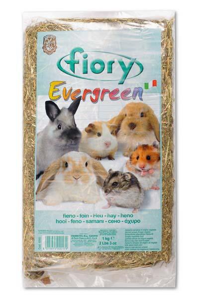 Сено для грызунов Fiory Evergreen, прессованное, 1 кг06560Сено Fiory Evergreen - необходимый грубый корм в рационах грызунов, источник протеина и клетчатки, сахаров, минеральных веществ, каротина, витаминов. Сено должно постоянно присутствовать в рационе питания кроликов и морских свинок. Это экологически чистый продукт, содержащий лекарственные травы и пищевые волокна. Сено также подойдет в качестве добавки к рациону грызуна, налаживающей пищеварение животного. Товар сертифицирован.