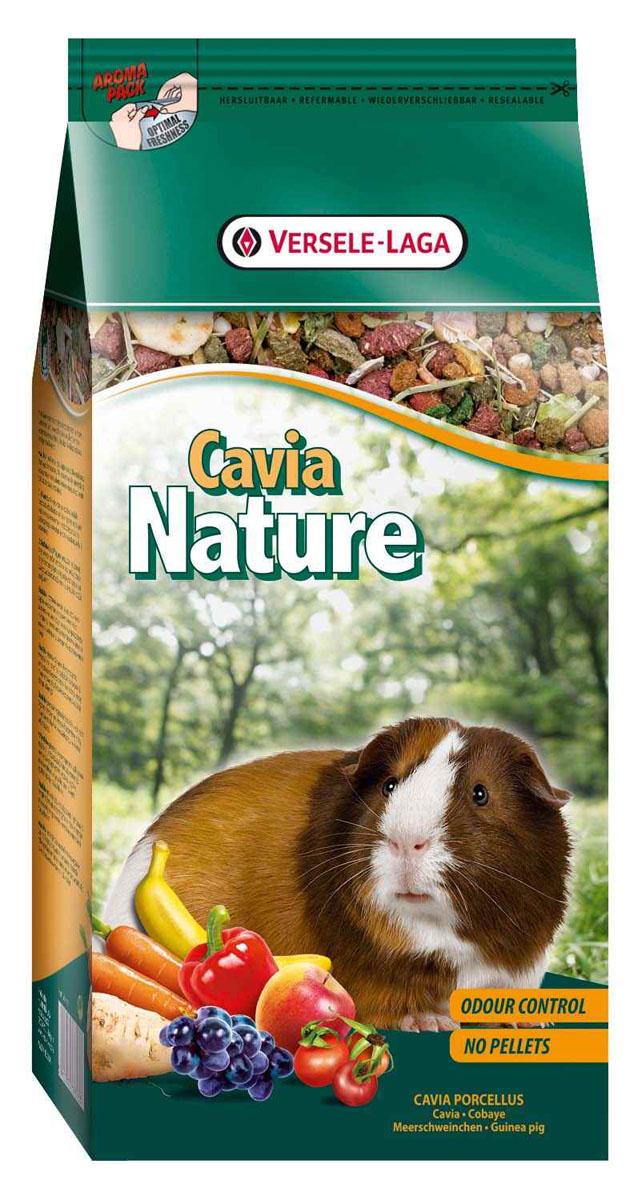Корм для морских свинок Versele-Laga Cavia Nature, 750 г - Versele-Laga461356Versele-Laga Cavia Nature - это полноценный основной корм для морских свинок, разработанный в соответствии с их пищевыми потребностями. Это высококачественная смесь природных компонентов, которая содержит все необходимые для организма питательные вещества, витамины, минералы и аминокислоты, необходимые для жизнерадостной и здоровой жизни вашего питомца. Versele-Laga Cavia Nature содержит дополнительное количество клетчатки, трав, овощей и добавок, важных для здоровья: обеспечивает превосходное пищеварение, гигиену полости рта, сияющую шерсть и великолепное здоровье. Широкое разнообразие ингредиентов гарантирует превосходный вкус и усвояемость. Не содержит прессованных гранул! Указания к использованию В зависимости от размера, породы и возраста морской свинки рекомендуемая дневная порция составляет от 35 до 50 грамм. Обеспечивайте вашему питомцу свежий корм и питьевую воду ежедневно. Также предоставьте достаточное количество сена. ...