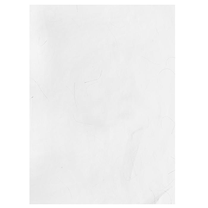 Рисовая бумага для декупажа Craft Premier Белая с люрексом, 28,2 х 38,4 смCP05232Рисовая бумага - мягкая бумага с выраженной волокнистой структурой легко повторяет форму любых предметов. При работе с этой бумагой вам не потребуется никакой дополнительной подготовки перед началом работы. Вы просто вырезаете или вырываете нужный фрагмент, и хорошо проклеиваете бумагу на поверхности изделия. Рисовая бумага для декупажа идеально подходит для стекла. В отличие от салфеток, при наклеивании декупажная бумага практически не рвется и совсем не растягивается. Клеить ее можно как на светлую, так и на темную поверхность. Для новичков в декупаже - это очень удобно и гарантируется хороший результат. Поверхность, на которую будет клеиться декупажная бумага, подготавливают точно так же, как и для наклеивания салфеток, распечаток и т.д. Мотив вырезаем точно по контуру и замачиваем в емкости с водой, обычно не больше чем на одну минуту, чтобы он полностью впитал воду. Вынимаем и промакиваем бумажным или обычным полотенцем с двух сторон. Равномерно наносим клей на оборотную...