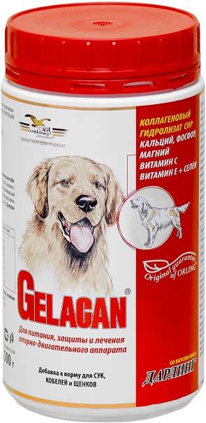 Добавка к корму для собак Orling Гелакан Дарлинг, 500 г. GLN-2GLN-2Добавка к корму для собак Orling Гелакан Дарлинг восстанавливает ткани суставов, укрепляет кости, связки и сухожилия. Применяется для предотвращения заболеваний и травм опорно-двигательного аппарата у собак всех пород и возрастов, а также при излишнем весе. Со второй половины жизни собаки желательно непрерывное применение. Показания: - для профилактики заболеваний опорно-двигательного аппарата; - для восстановления суставных хрящей, костей, связок и сухожилий; - при заболеваниях и травмах сухожилий; - при дисплазии тазобедренных суставов; - после операций и травм для ускорения заживления ран; - для продления активной жизни собаки. Характеристики: Состав (в 1 кг): коллаген СHP 815 г, кальций 25 г, фосфор 21 г, магний 5 г, селен 4 мг, бета-каротин 200 мг, витамин С 5 г, витамин Е 3,8 г. Вес: 500 г. Товар сертифицирован.