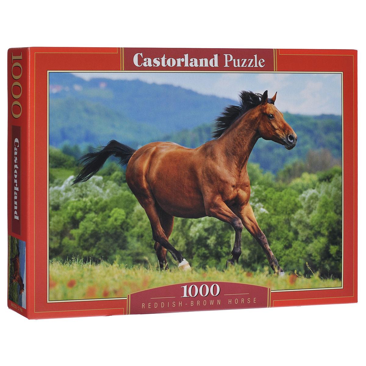 Лошадь. Пазл, 1000 элементовС-102396Пазл Лошадь, без сомнения, придется вам по душе. Собрав этот пазл, включающий в себя 1000 элементов, вы получите великолепную картину с изображением лошади на фоне природы. Пазл - великолепная игра для семейного досуга. Сегодня собирание пазлов стало особенно популярным, главным образом, благодаря своей многообразной тематике, способной удовлетворить самый взыскательный вкус. А для детей это не только интересно, но и полезно. Собирание пазла развивает мелкую моторику у ребенка, тренирует наблюдательность, логическое мышление, знакомит с окружающим миром, с цветом и разнообразными формами.