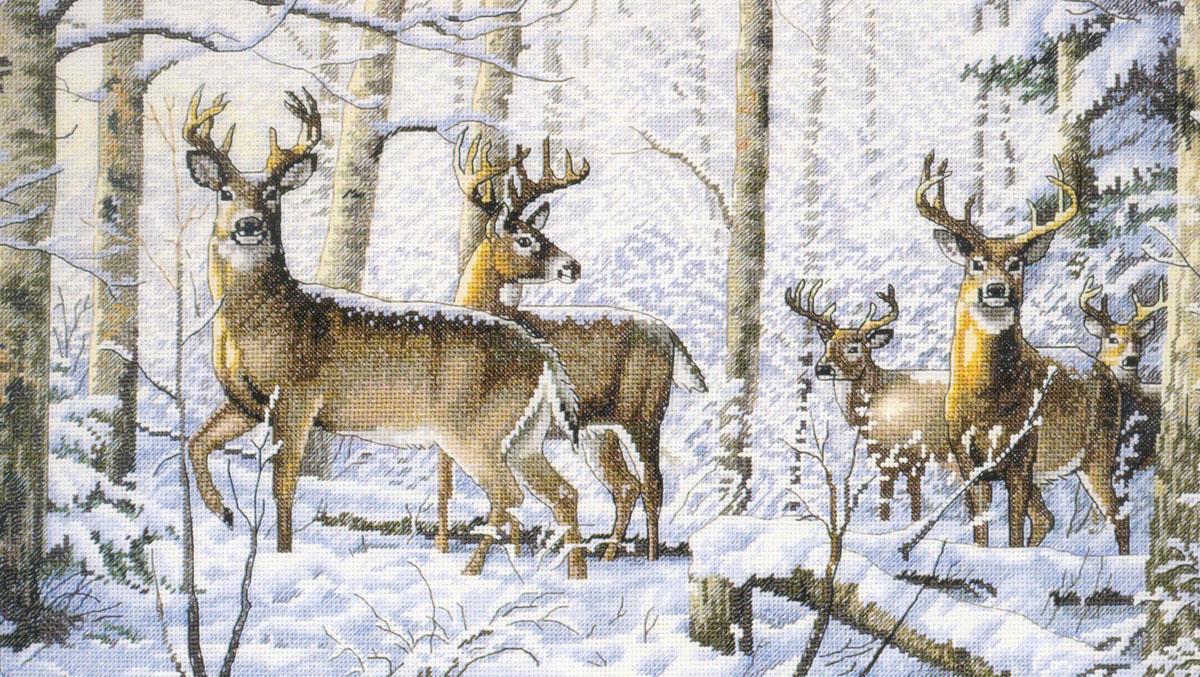 Набор для вышивания Dimensions Зима в лесу, 45 см х 25 см644403Красивый рисунок-вышивка Зима в лесу, выполненный на канве, выглядит оригинально. Рисунок вышивается в технике счетный крест. Вышивание отвлечет вас от повседневных забот и превратится в увлекательное занятие! Работа, сделанная своими руками, создаст особый уют и атмосферу в доме и долгие годы будет радовать вас и ваших близких, а подарок, выполненный собственноручно, станет самым ценным для друзей и знакомых. В набор входят: - канва Aida 18 (цвет: белый), - хлопковые мулине (32 цвета), - игла, - цветная схема, - инструкция на русском языке (универсальная).